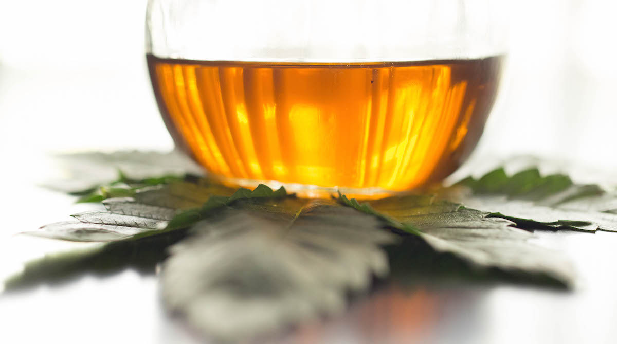 Weed (Marijauna) Olive Oil Recipe